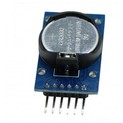 Precision RTC Real Time Clock Memory Module