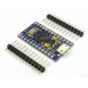 Arduino Pro Micro compatible